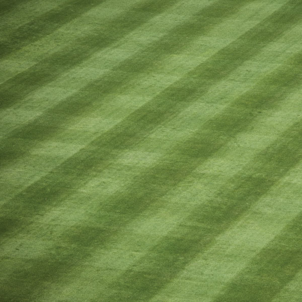 Stamping Station Ball Field Grass Checkerboard Paper Scrappin